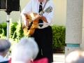 Jazz_in_the_Garden20110713-_DSC4982_5935200603