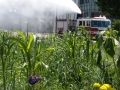 Grow_Saginaw_and_the_Fire_Department_5910462947