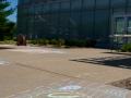 saginaw happening - art museum chalk art_-20140813-DSC_6965