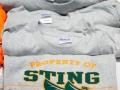 sting-006