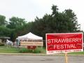 Strawberry_Festival_2011-1_5862102696
