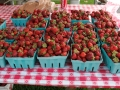Strawberry_Festival_2011-2_5861562069