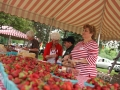 Strawberry_Festival_2011-3_5861570625