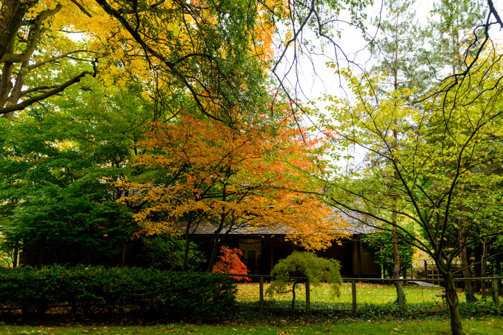 japanese cultural center saginaw mi - fall - 07
